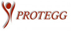 protegg2-e1365592394807